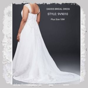 David's Bridal Wedding Gown w/ Train & Vail 18W